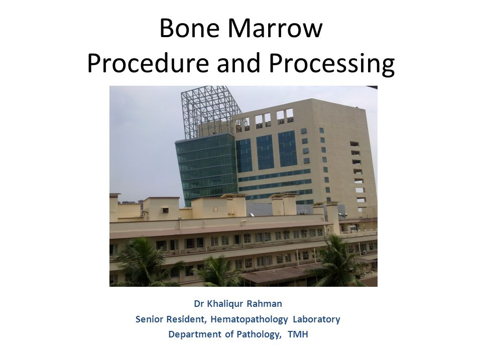 Bone Marrow Procedure and Processing