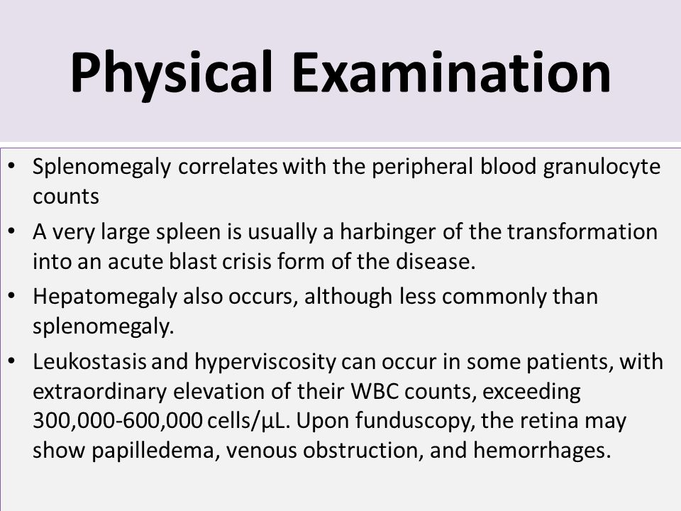 Physical Examination Splenomegaly correlates with the peripheral blood granulocyte counts.