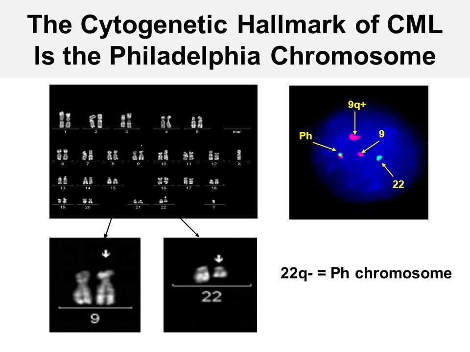 The Cytogenetic Hallmark of CML Is the Philadelphia Chromosome