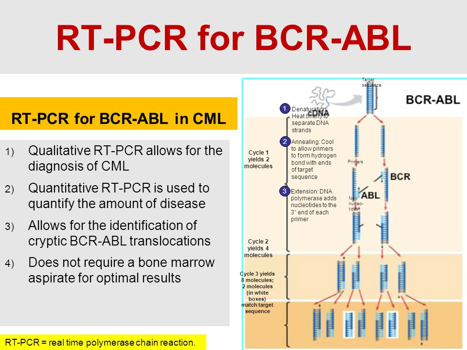 RT-PCR for BCR-ABL RT-PCR for BCR-ABL in CML