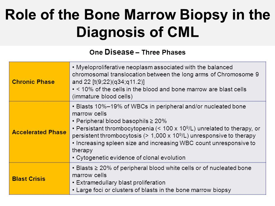 Role of the Bone Marrow Biopsy in the Diagnosis of CML