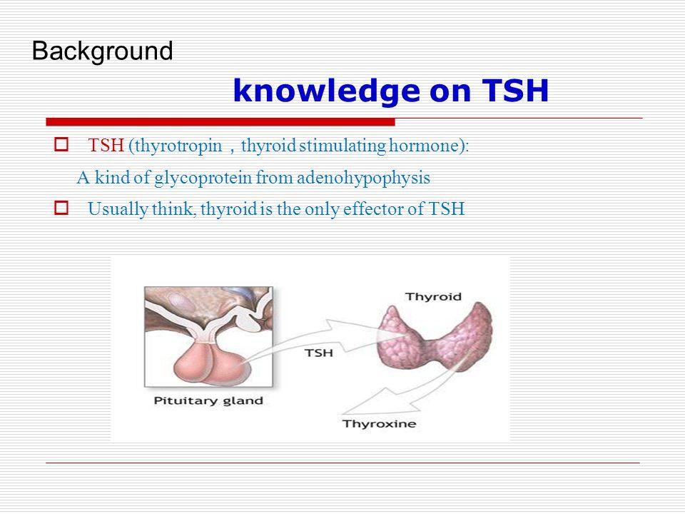 knowledge on TSH Background