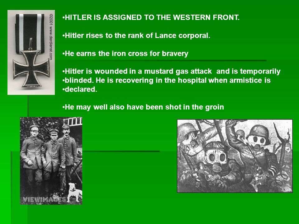 HITLER IS ASSIGNED TO THE WESTERN FRONT.