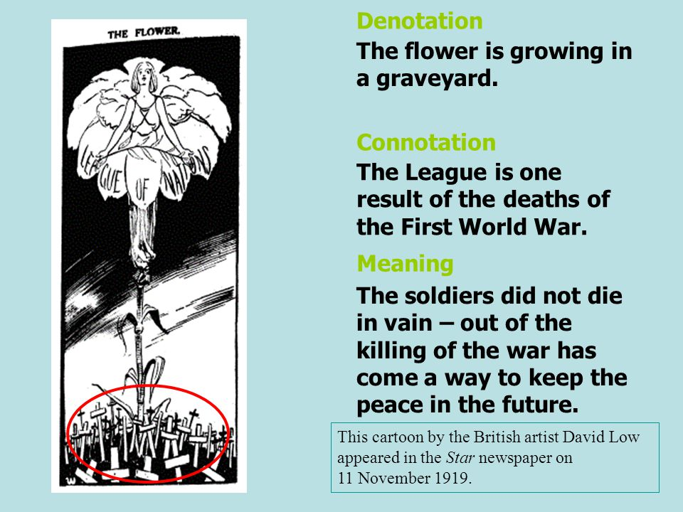 The flower is growing in a graveyard.