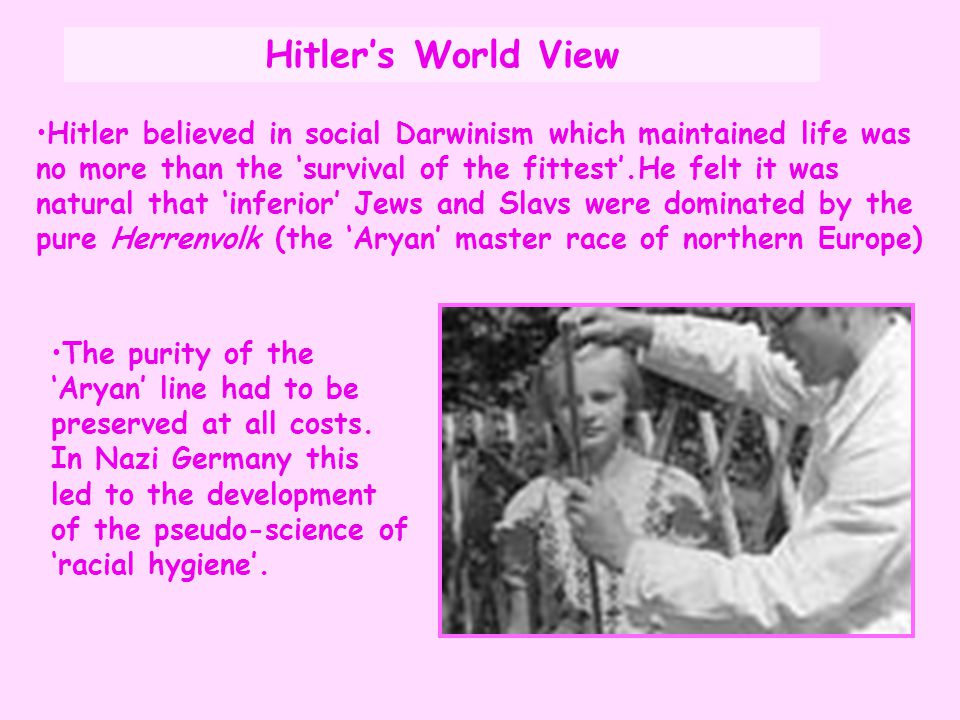 Hitler's World View