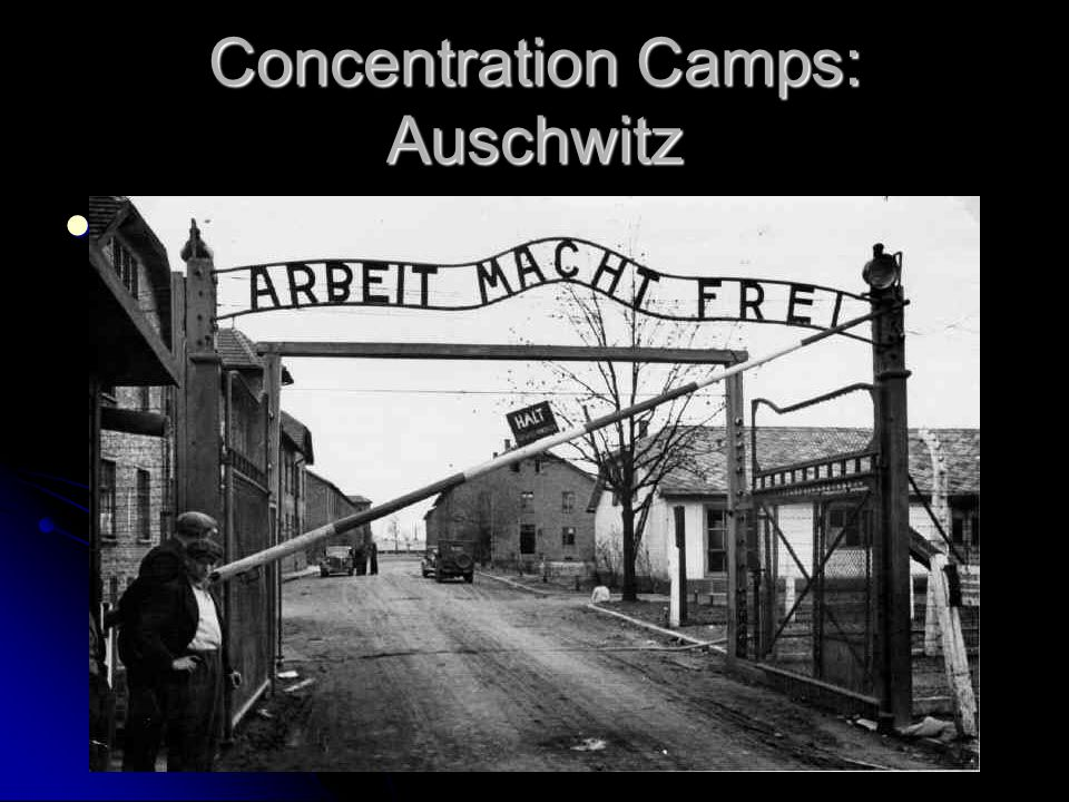 Concentration Camps: Auschwitz