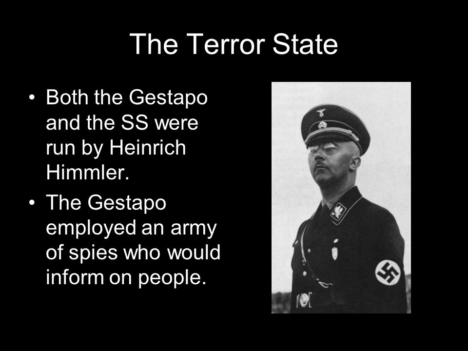 The Terror State Both the Gestapo and the SS were run by Heinrich Himmler.