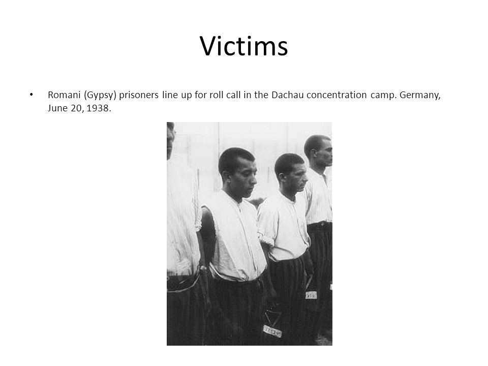 Victims Romani (Gypsy) prisoners line up for roll call in the Dachau concentration camp.