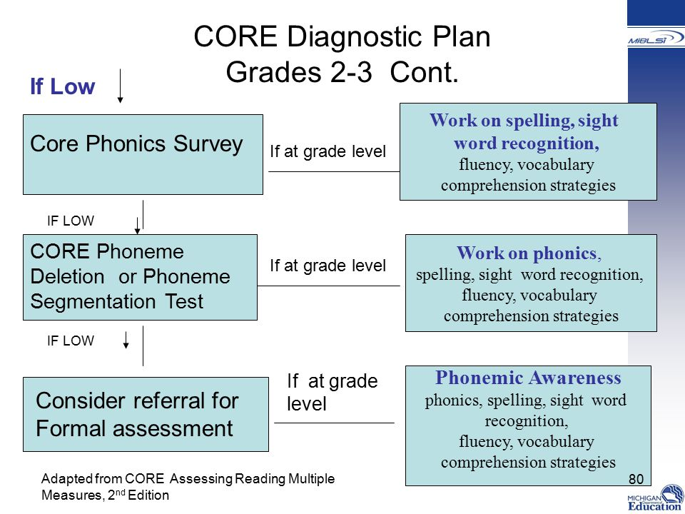 CORE Diagnostic Plan Grades 2-3 Cont.