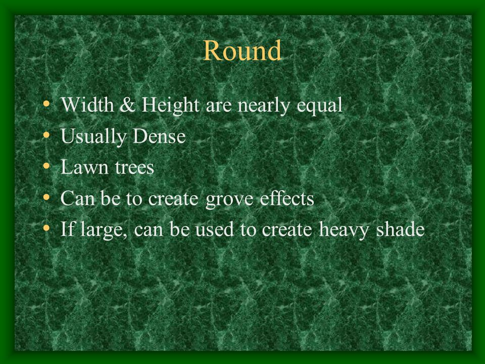 Round Width & Height are nearly equal Usually Dense Lawn trees