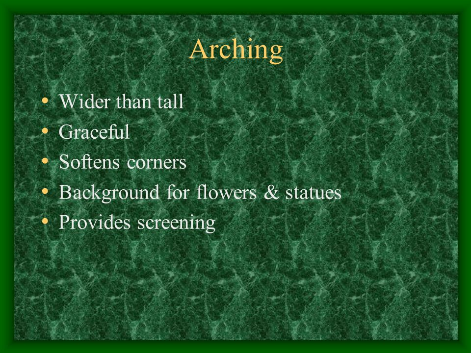 Arching Wider than tall Graceful Softens corners