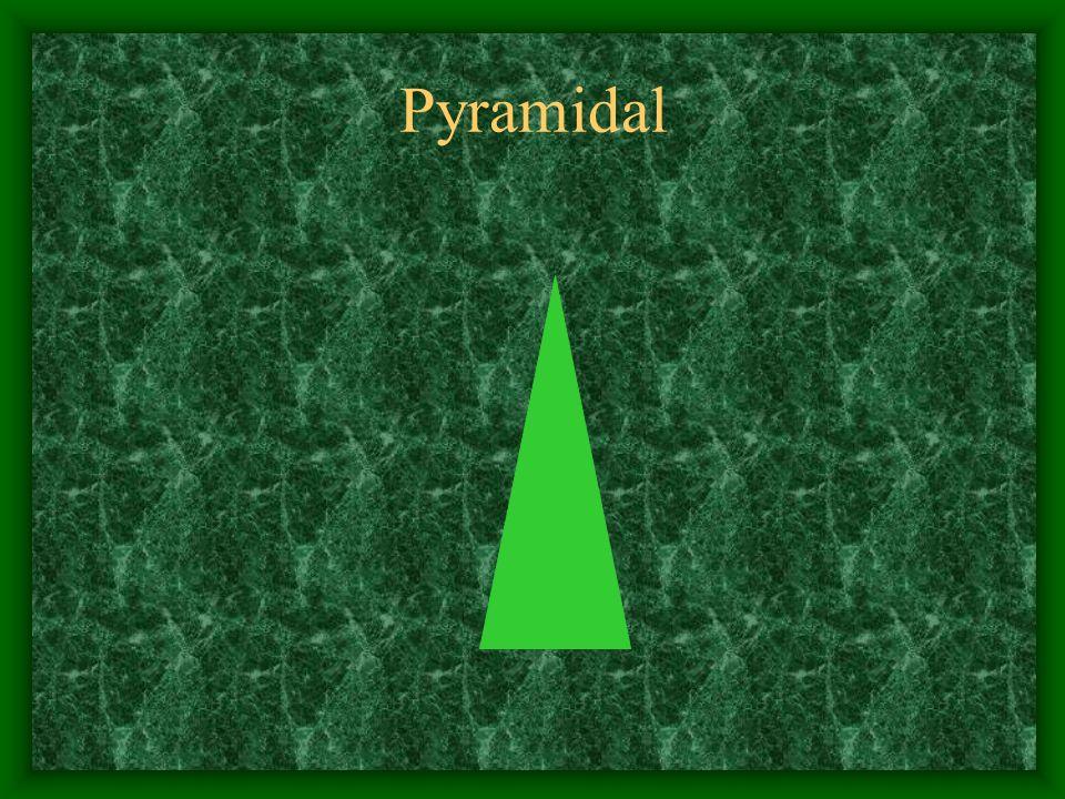 Pyramidal