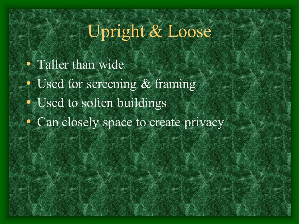 Upright & Loose Taller than wide Used for screening & framing