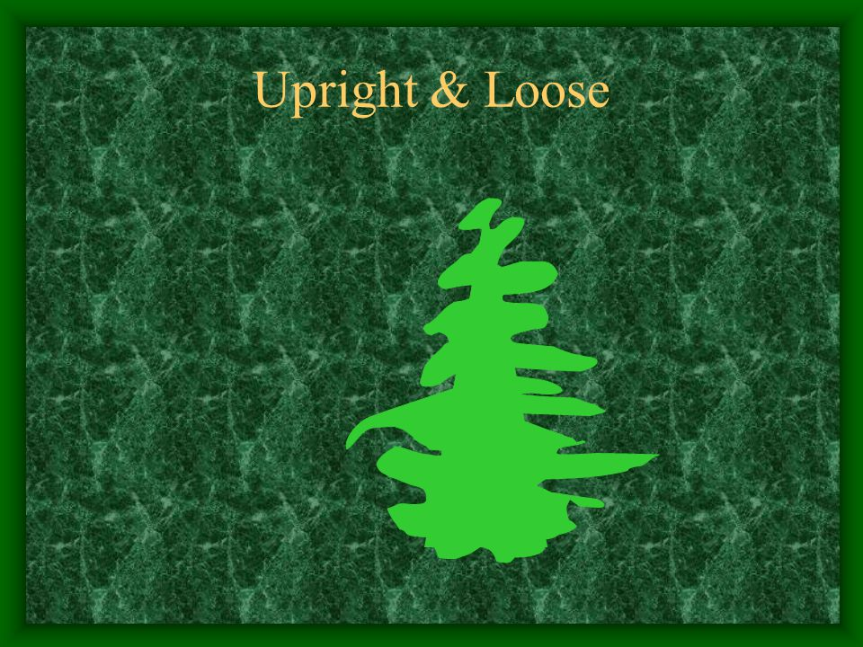 Upright & Loose
