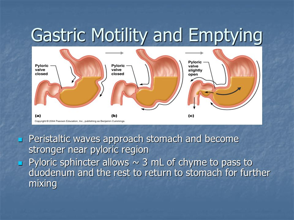 Gastric Motility and Emptying