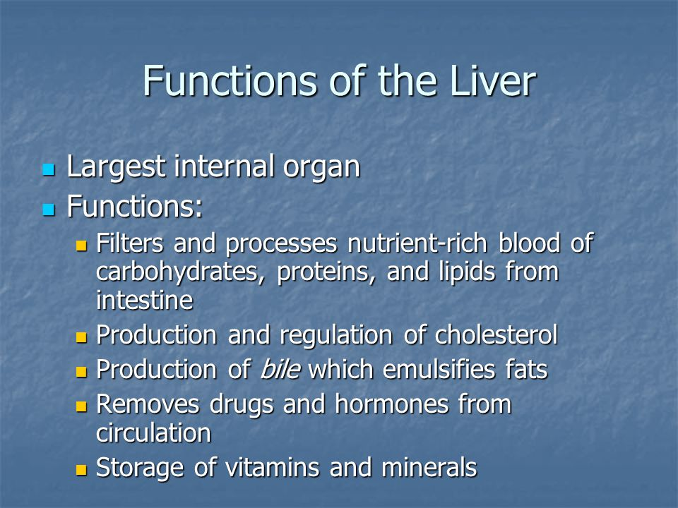 Functions of the Liver Largest internal organ Functions: