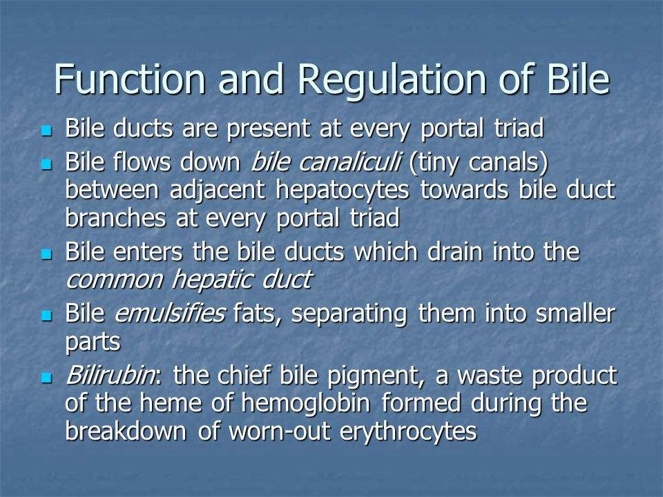 Function and Regulation of Bile