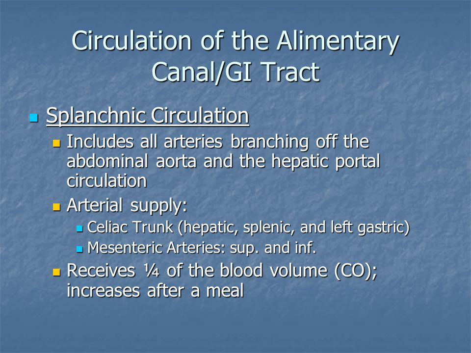 Circulation of the Alimentary Canal/GI Tract