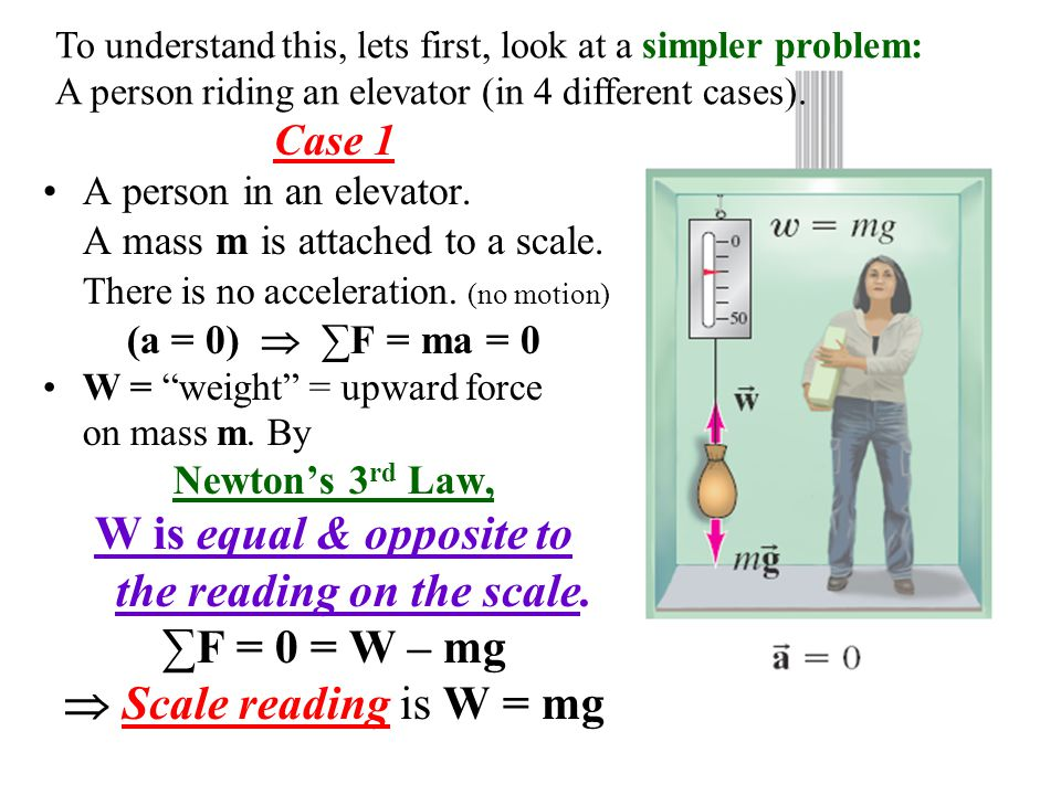 the reading on the scale.