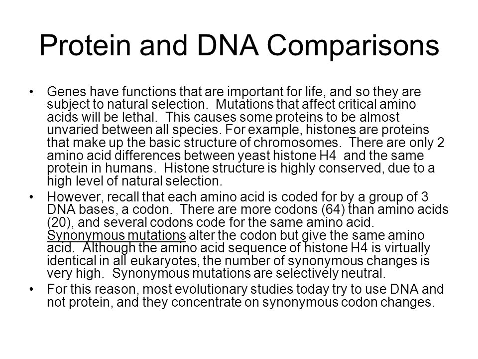 Protein and DNA Comparisons
