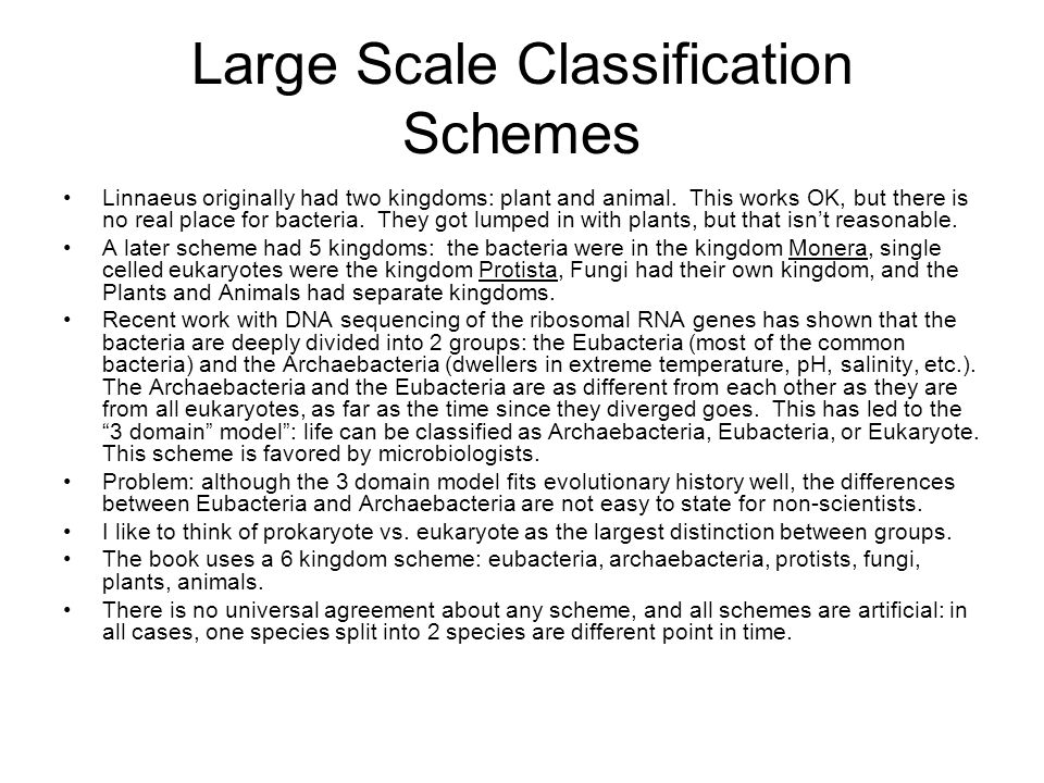 Large Scale Classification Schemes