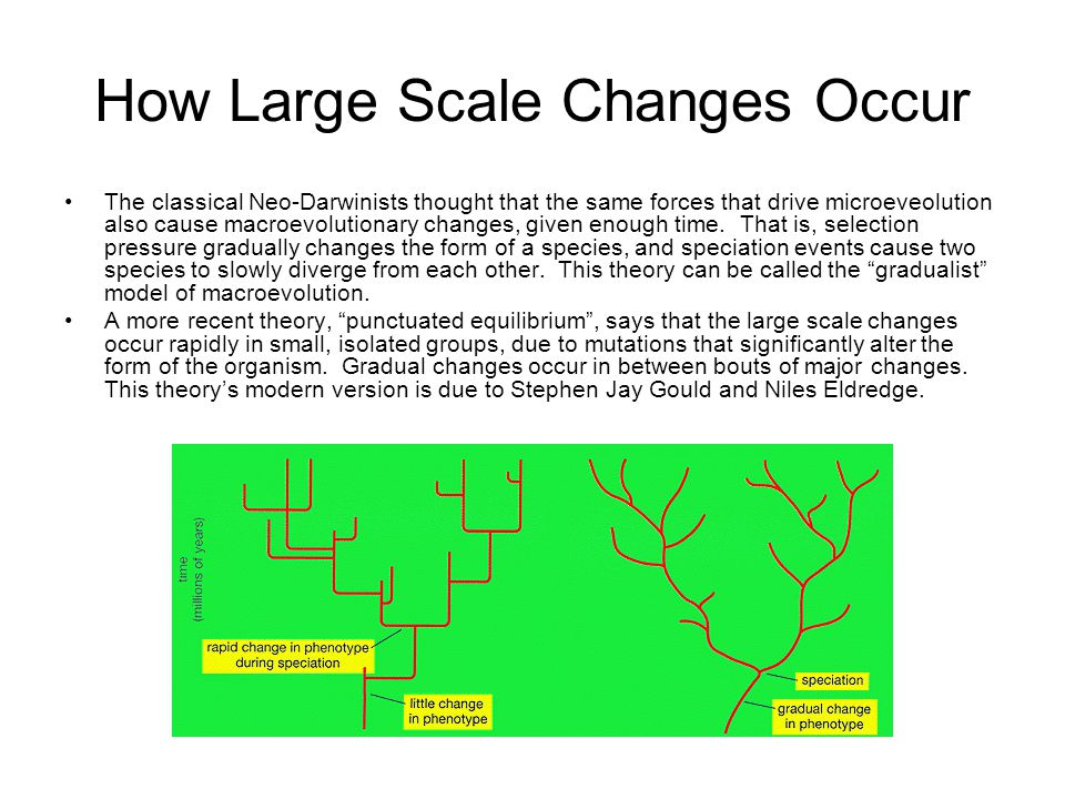 How Large Scale Changes Occur