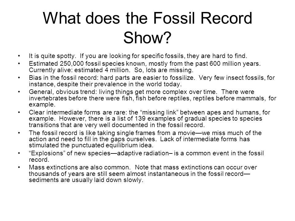 What does the Fossil Record Show