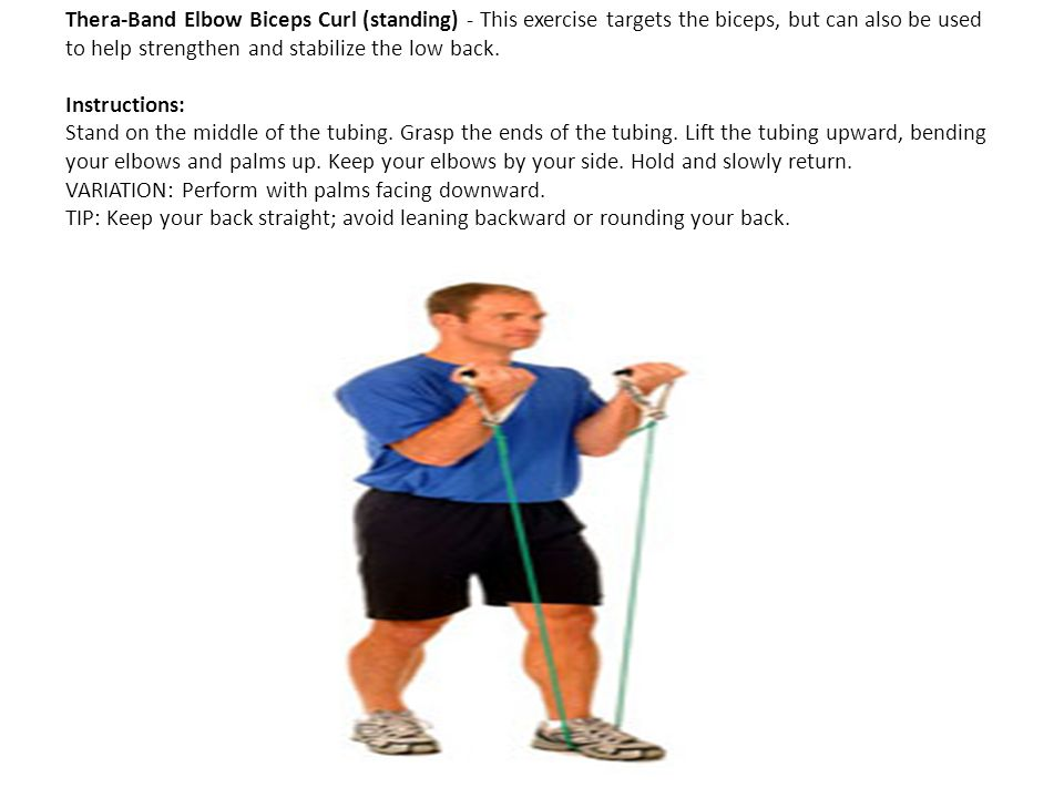 Thera-Band Elbow Biceps Curl (standing) - This exercise targets the biceps, but can also be used to help strengthen and stabilize the low back.