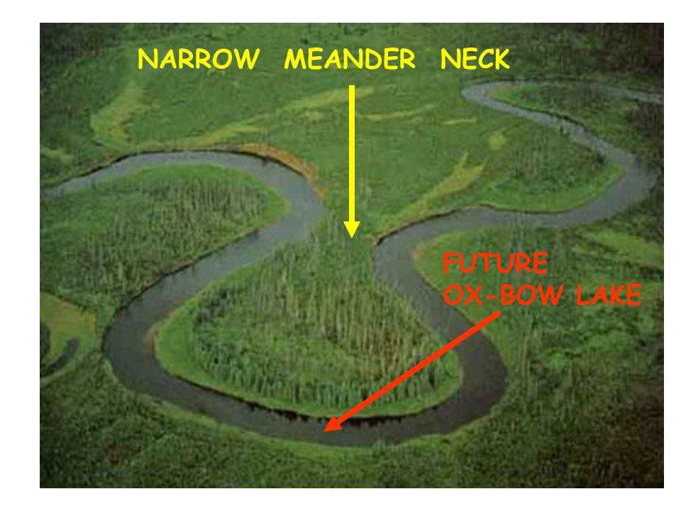 NARROW MEANDER NECK FUTURE OX-BOW LAKE