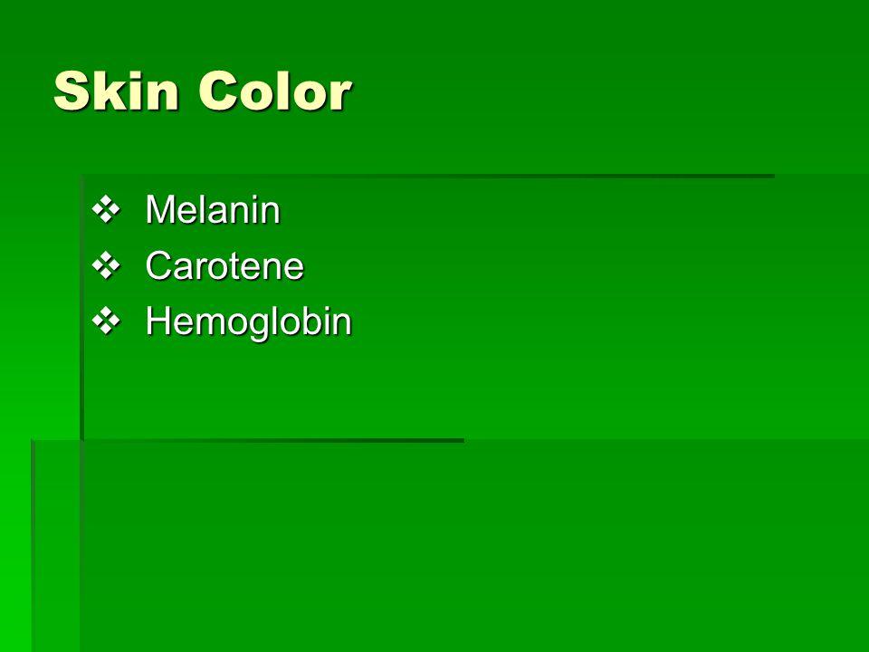 Skin Color Melanin Carotene Hemoglobin