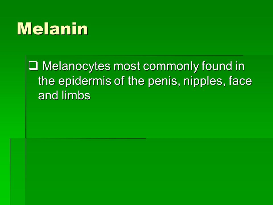 Melanin Melanocytes most commonly found in the epidermis of the penis, nipples, face and limbs