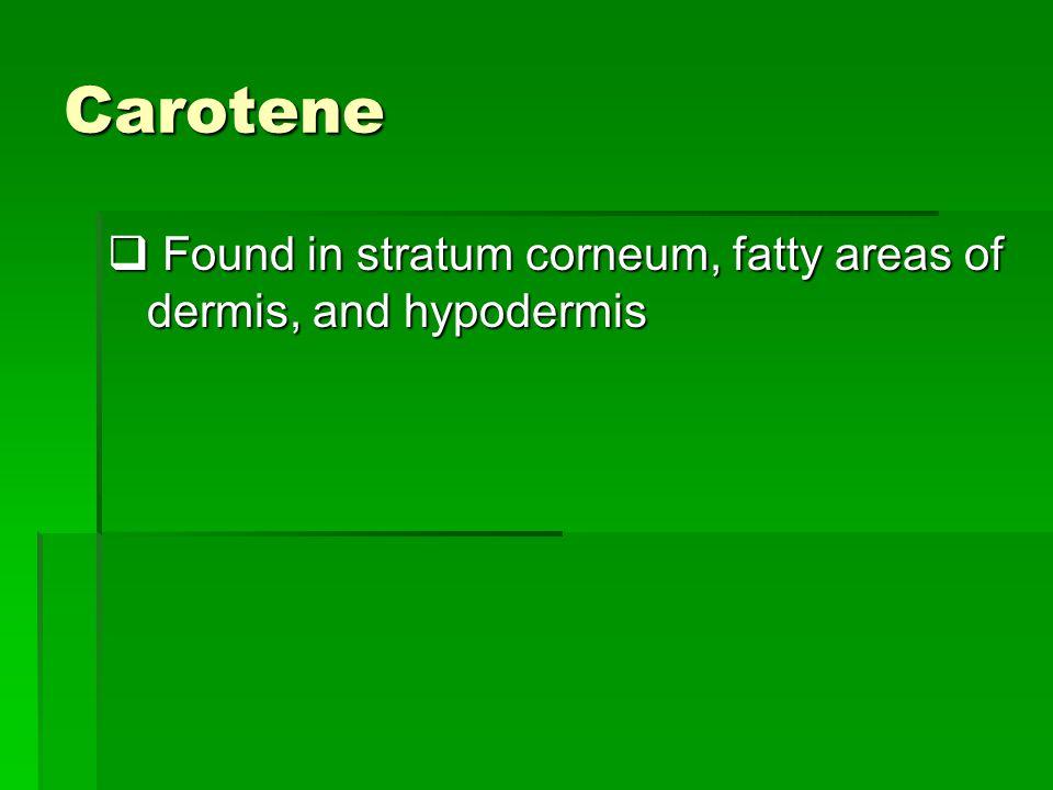 Carotene Found in stratum corneum, fatty areas of dermis, and hypodermis