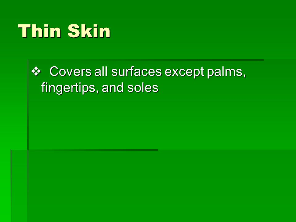 Thin Skin Covers all surfaces except palms, fingertips, and soles