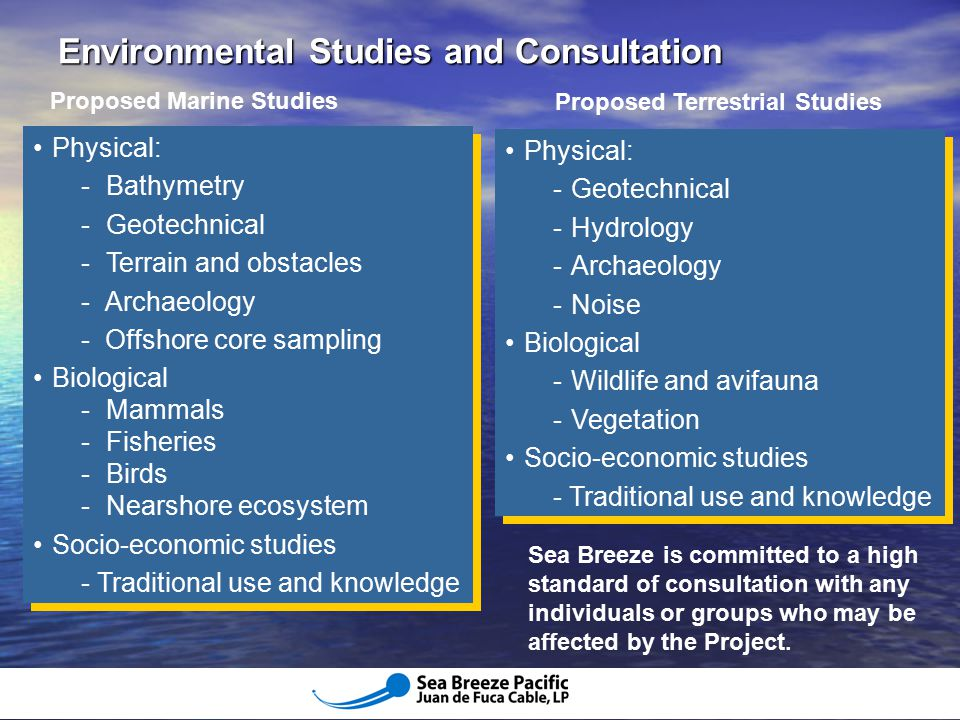 Environmental Studies and Consultation