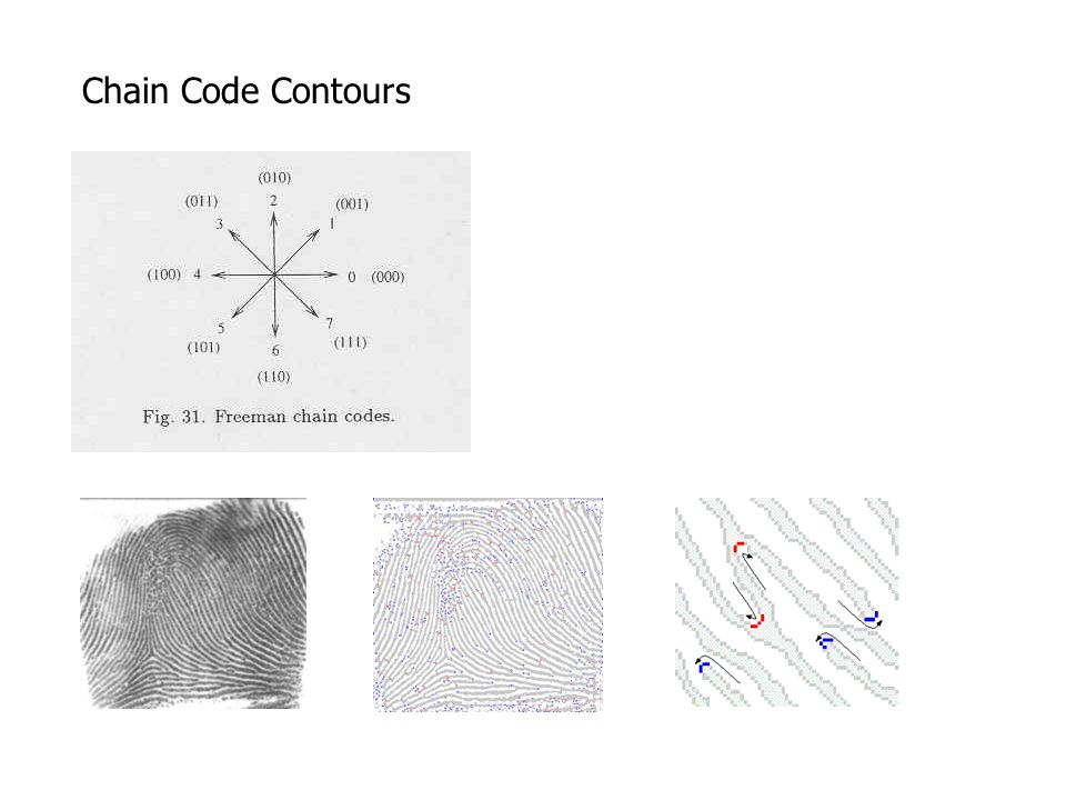 Chain Code Contours