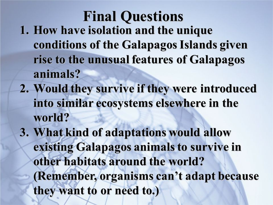 Final Questions How have isolation and the unique conditions of the Galapagos Islands given rise to the unusual features of Galapagos animals