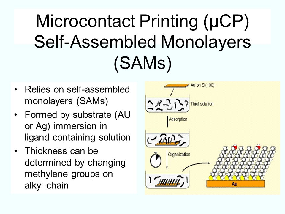 Microcontact Printing (µCP) Self-Assembled Monolayers (SAMs)