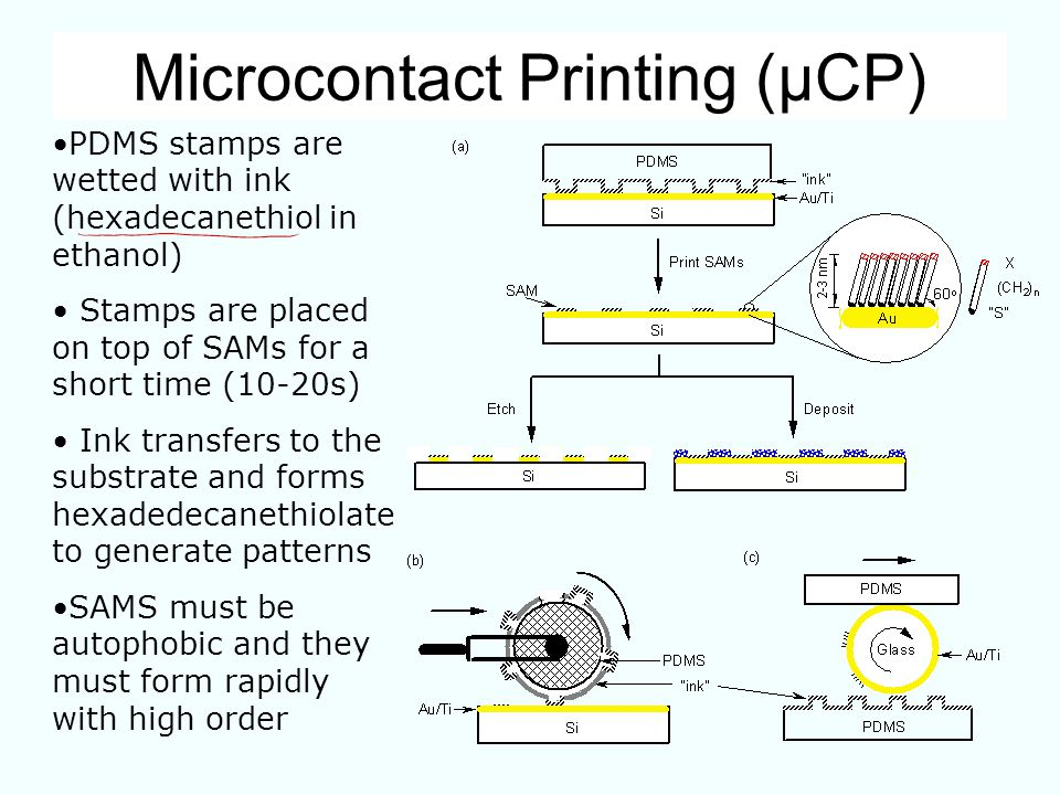 Microcontact Printing (µCP)