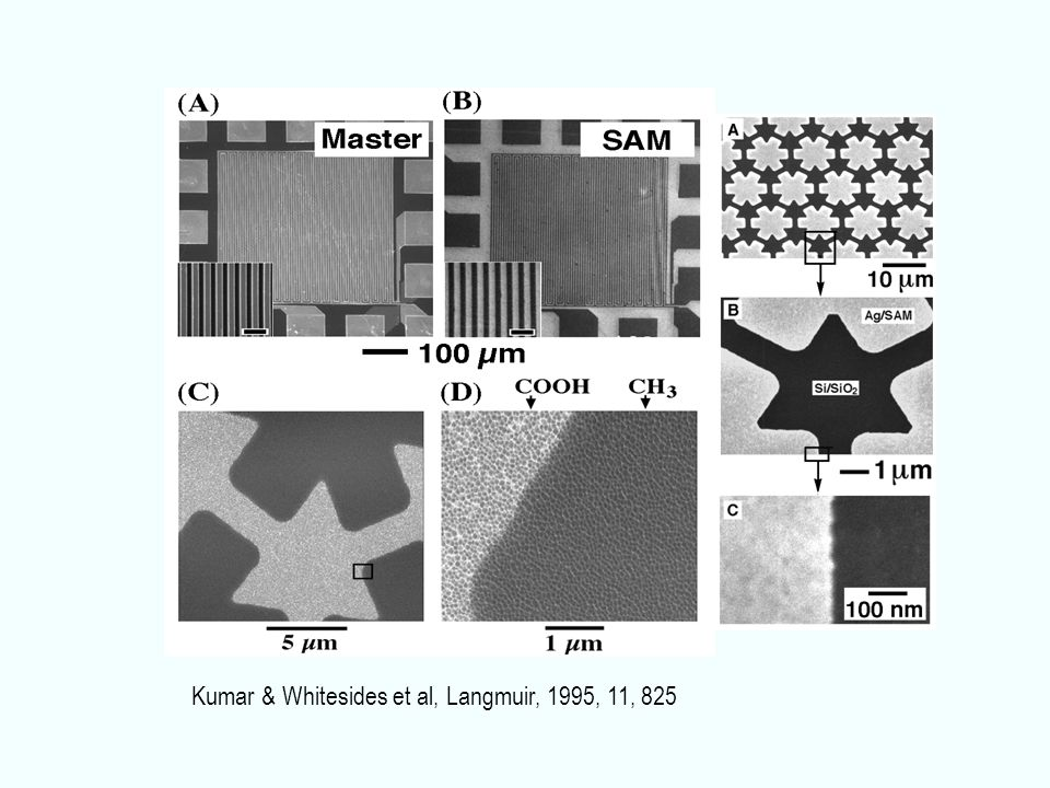 Kumar & Whitesides et al, Langmuir, 1995, 11, 825