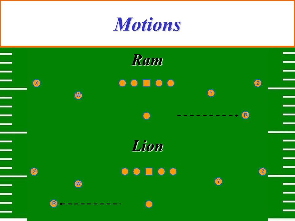 Motions Ram Lion