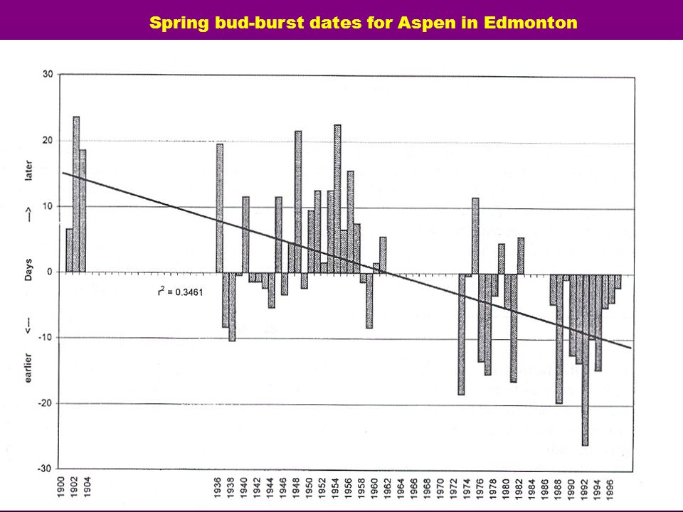 Spring bud-burst dates for Aspen in Edmonton