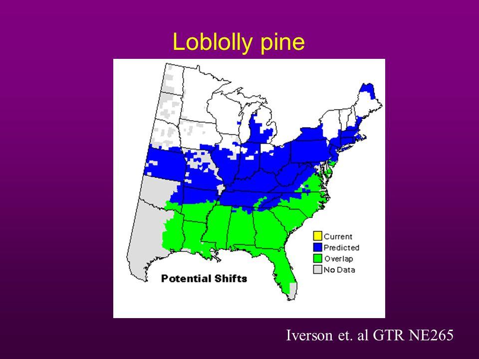 Loblolly pine Iverson et. al GTR NE265