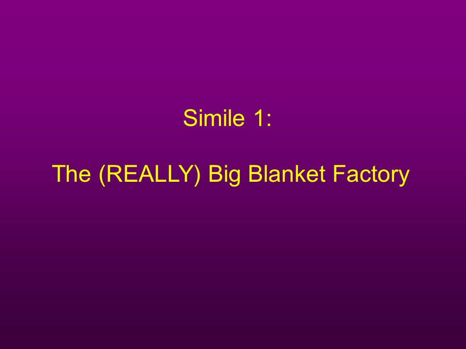 The (REALLY) Big Blanket Factory