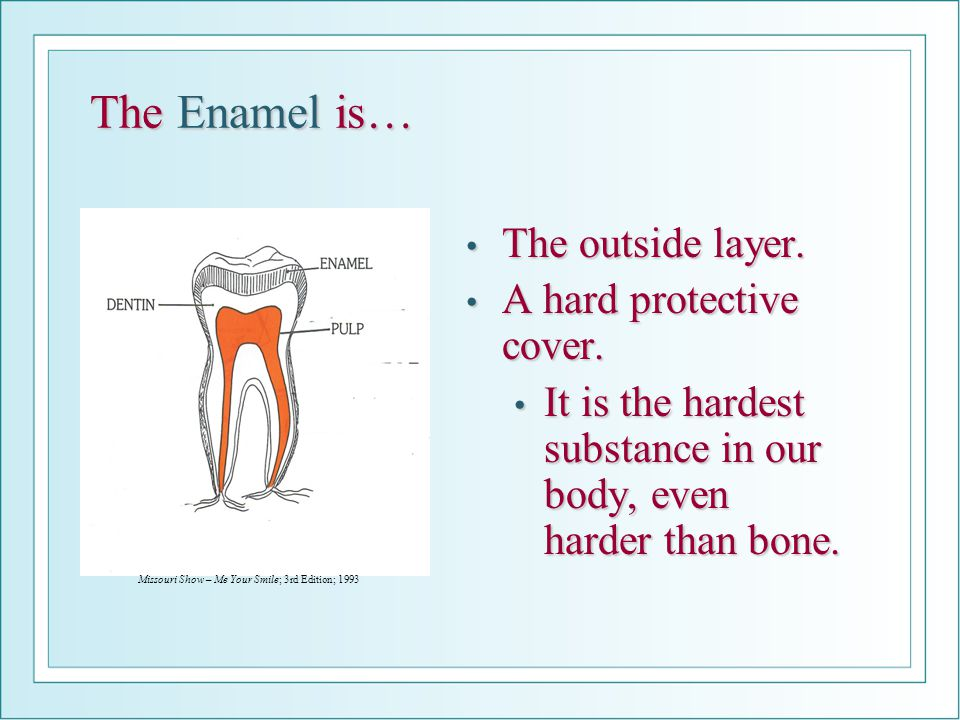 The Enamel is… The outside layer. A hard protective cover.