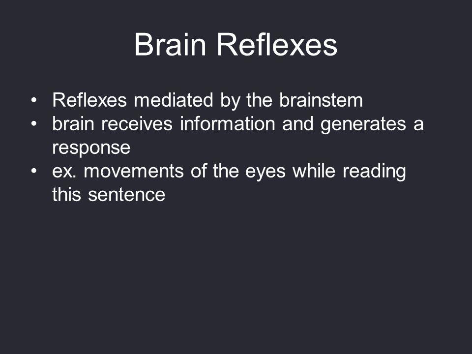 Brain Reflexes Reflexes mediated by the brainstem