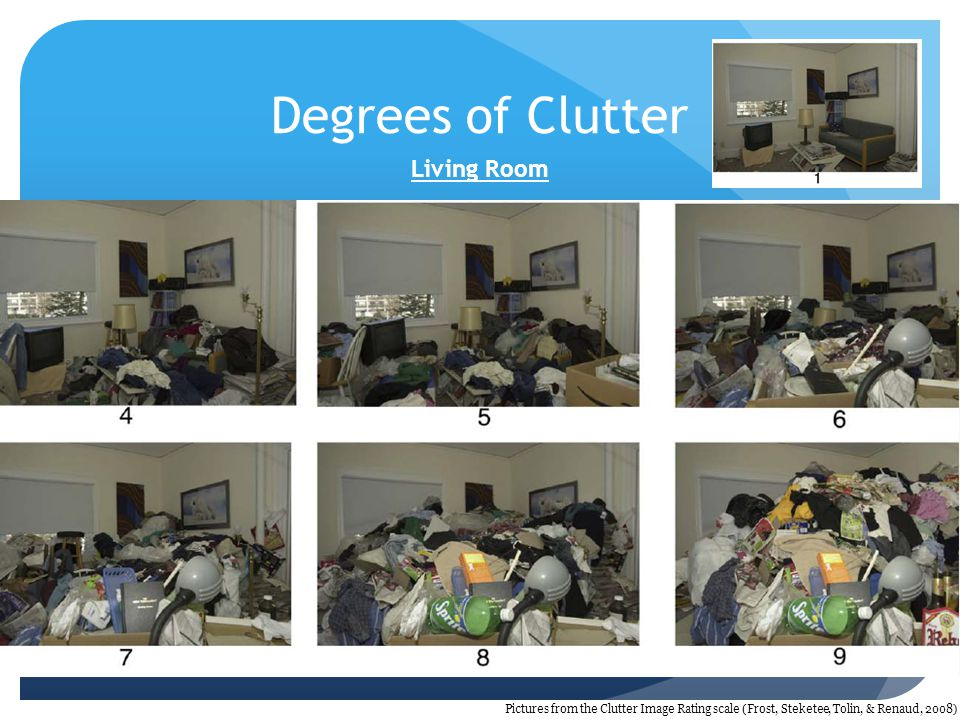 Degrees of Clutter Living Room