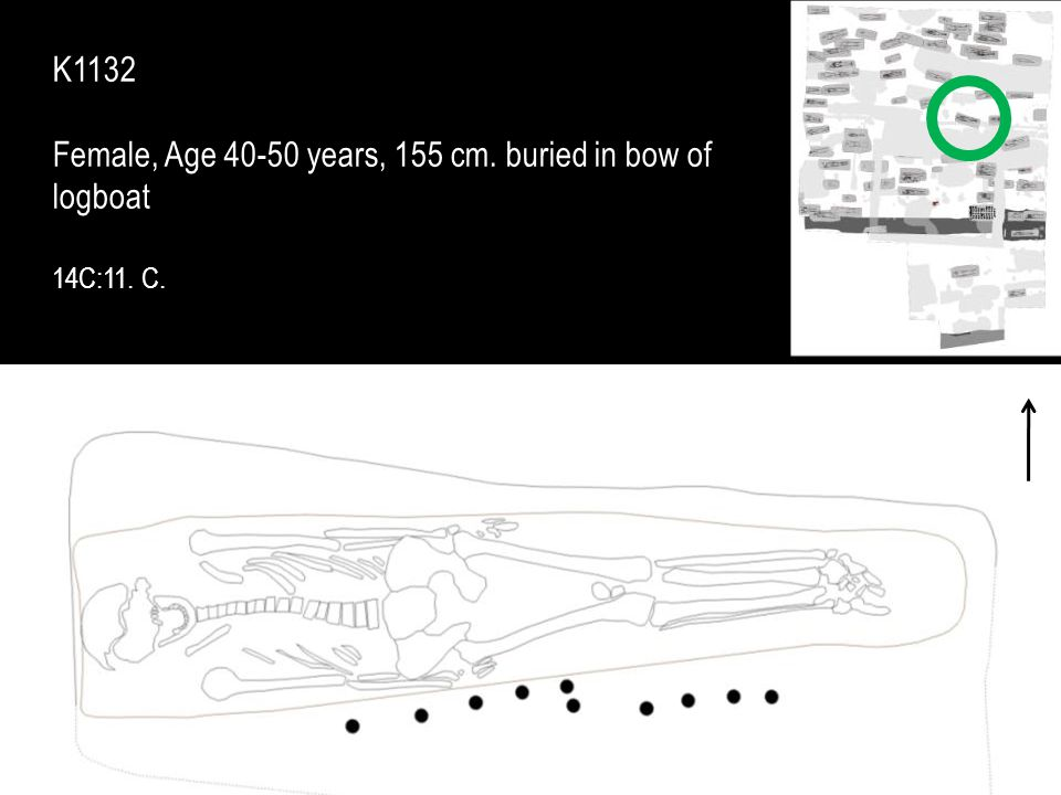 Female, Age 40-50 years, 155 cm. buried in bow of logboat
