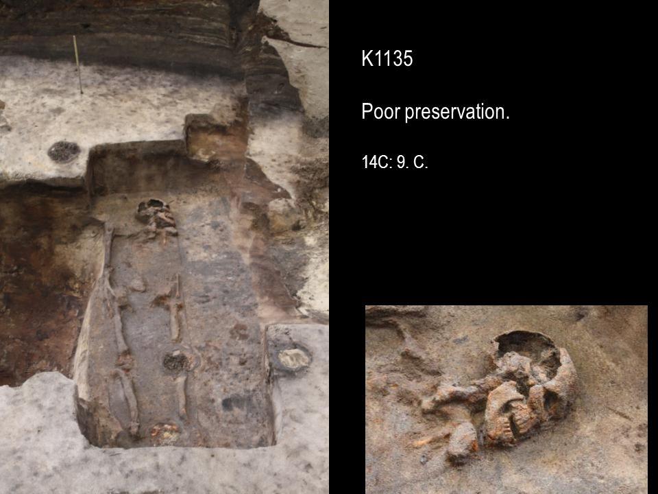 K1135 Poor preservation. 14C: 9. C.