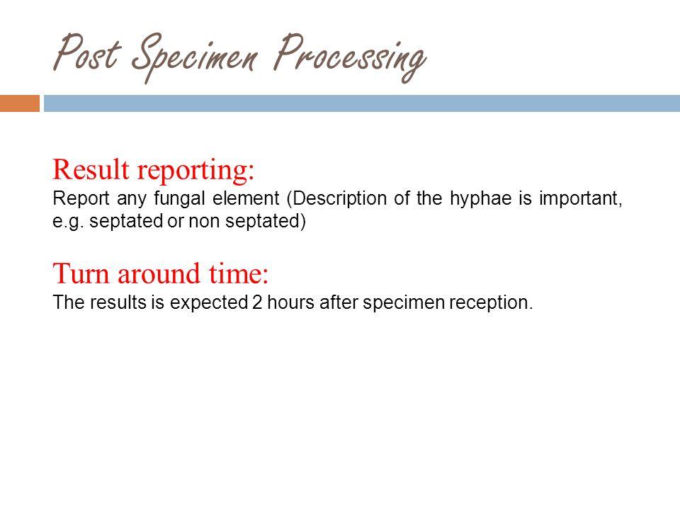 Post Specimen Processing
