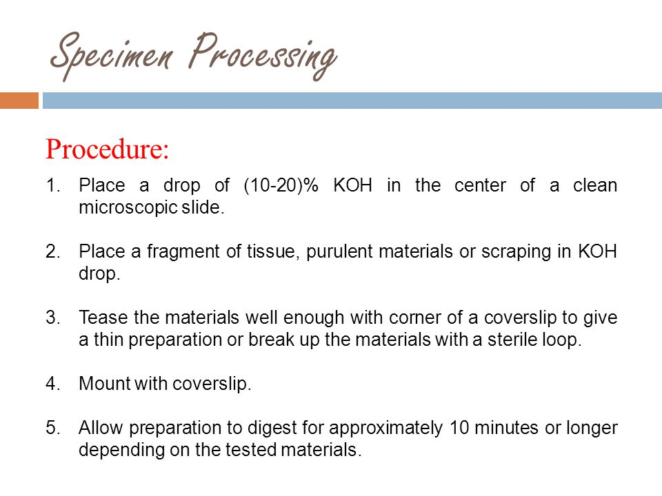 Specimen Processing Procedure:
